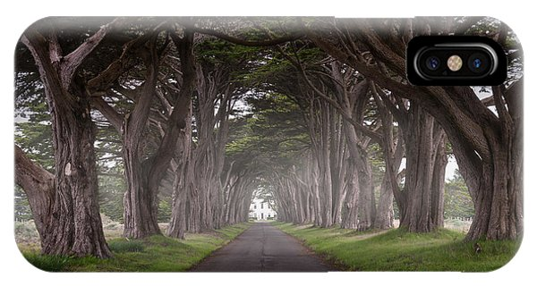 Through The Cypress IPhone Case