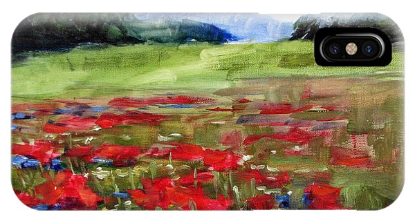 Wiese iPhone Case - Thunder Clouds Over Bavarian Meadow by Karin Leonard