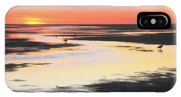 Tidal Flats At Sunset IPhone Case