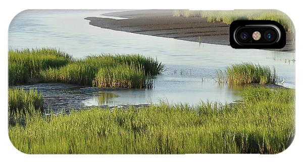 Tidal Marsh iPhone Case - Tidal Marsh by Al Powell Photography USA