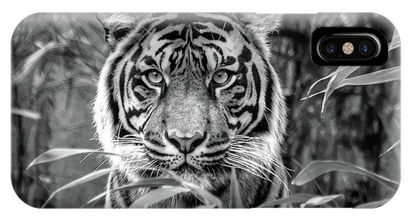 Tiger B/w IPhone Case