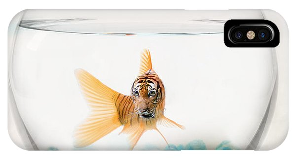 Catfish iPhone Case - Tiger Fish by Juli Scalzi