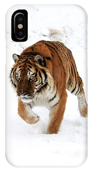 Tiger In Snow IPhone Case