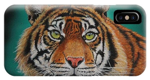 Tiger Portrait......amur Tiger IPhone Case