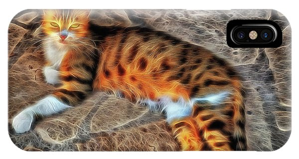 IPhone Case featuring the photograph Tiger Tiger Burning Bright by Leigh Kemp