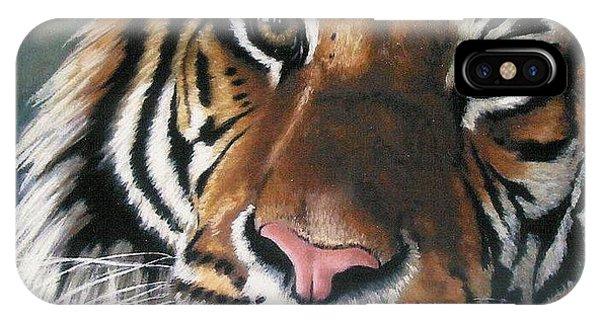 Big Cat iPhone Case - Tigger by Barbara Keith
