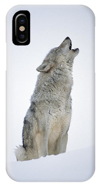Wolf iPhone Case - Timber Wolf Portrait Howling In Snow by Tim Fitzharris