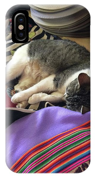 Time For A Siesta IPhone Case