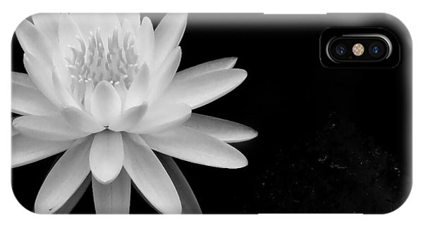 Black And White -timeless Lily IPhone Case