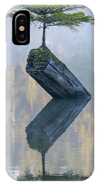 Timeless Tranquility IPhone Case