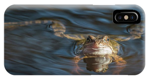 Timeout From The Annual Frog Ball IPhone Case