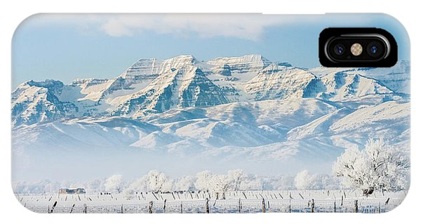 Timp In Winter IPhone Case