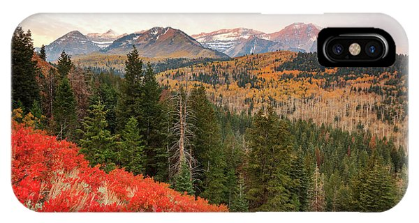 Timp With Red Oak Phone Case by Johnny Adolphson