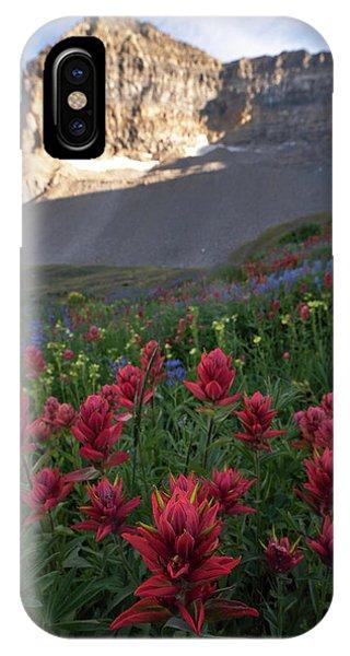 Timpanogos Paintbrush IPhone Case