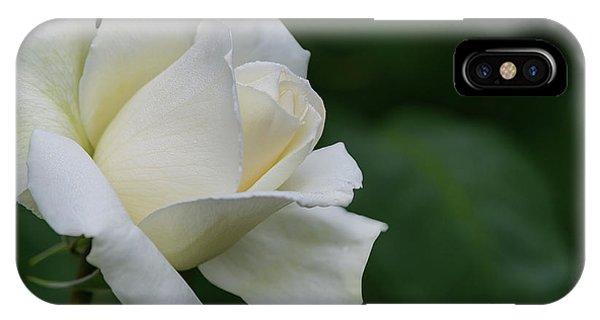 Tineke Rose 1 IPhone Case