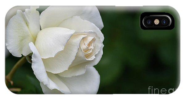 Tineke Rose 2 IPhone Case