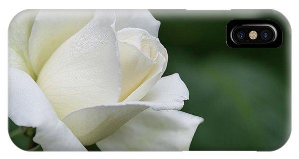 Tineke Rose 4 IPhone Case