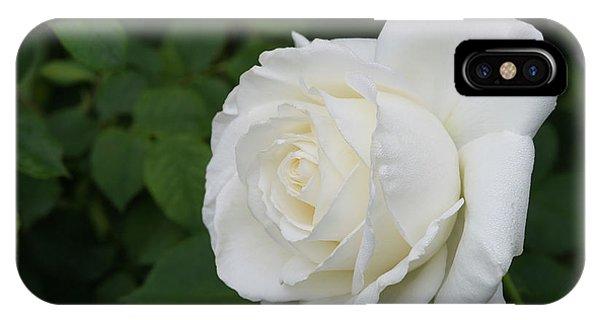 Tineke Rose 3 IPhone Case