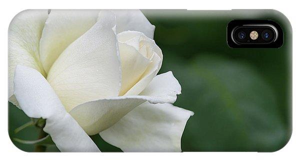 Tineke Rose 5 IPhone Case