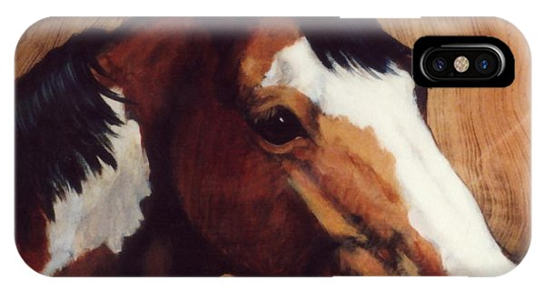 Tingeys Fancy   Paint Horse Phone Case by JoAnne Corpany