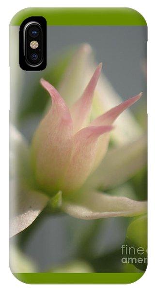 Tiny Crown IPhone Case