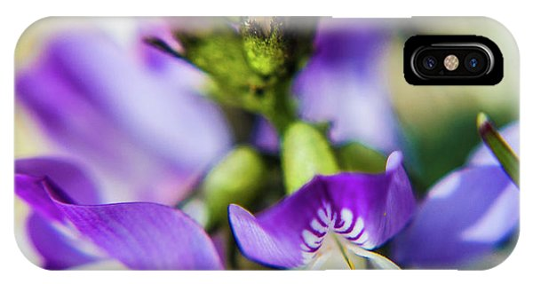 IPhone Case featuring the photograph Tiny Flower by Tyson Kinnison