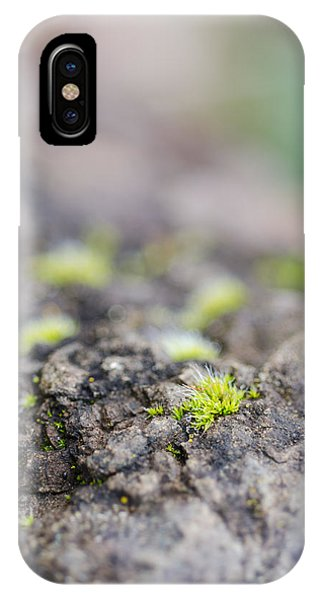 IPhone Case featuring the photograph Tiny Life by Margaret Pitcher
