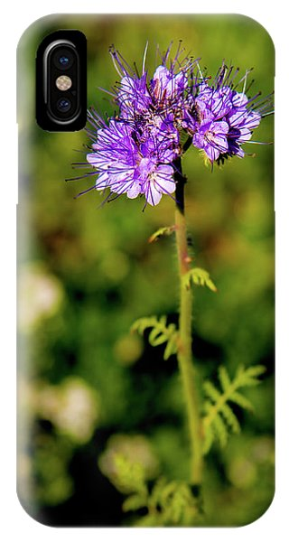 IPhone Case featuring the photograph Tiny Puprle Flowers by Onyonet  Photo Studios