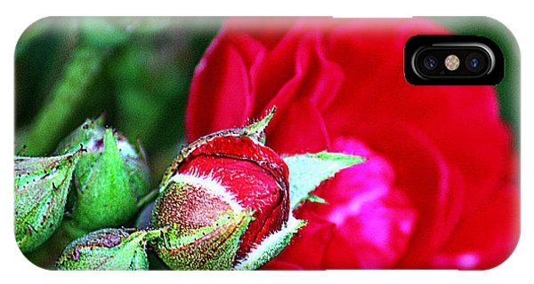 Tiny Red Rosebuds IPhone Case