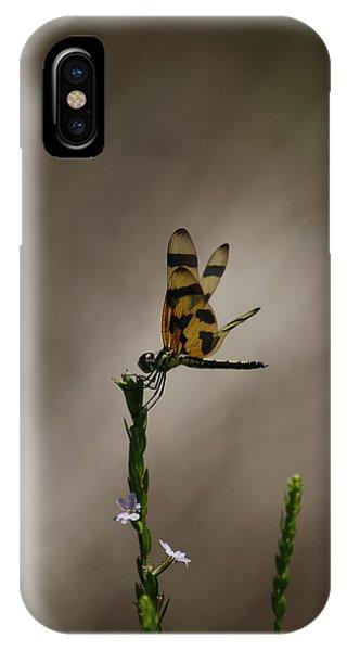 Tiptop IPhone Case
