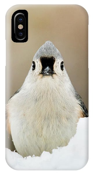 Tufted Titmouse In Snow IPhone Case