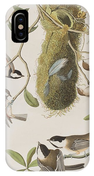 Titmouse iPhone Case - Titmouses by John James Audubon
