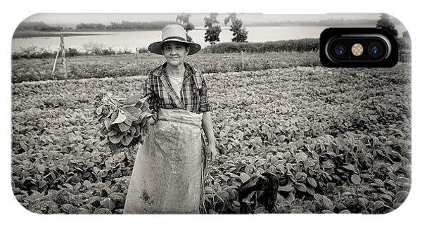 Tobacco Farm IPhone Case