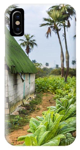 Tobacco Plantation IPhone Case