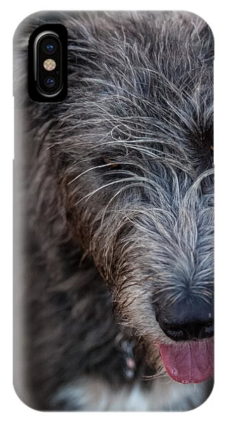 Toby, The Irish Wolfhound Pup IPhone Case