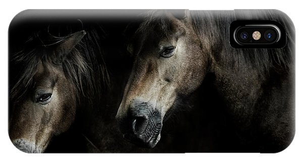 Equine iPhone Case - Together We Stand  by Paul Neville