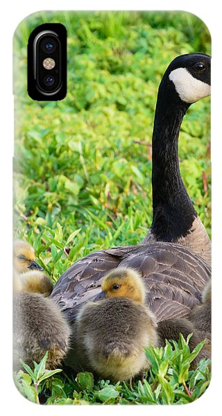 Canada Goose iPhone Case - Togetherness by Patrick Campbell