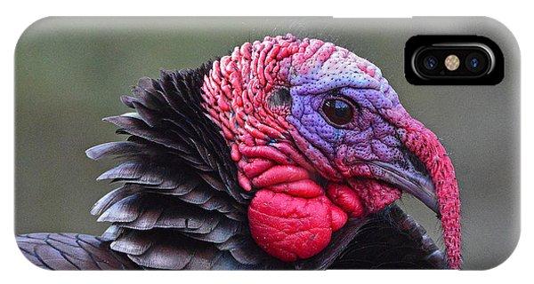 Tom Turkey IPhone Case