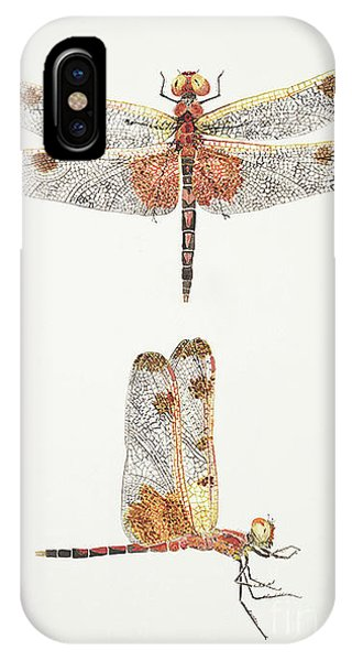 Top And Side Views Of A Male Calico Pennant Dragonfly IPhone Case