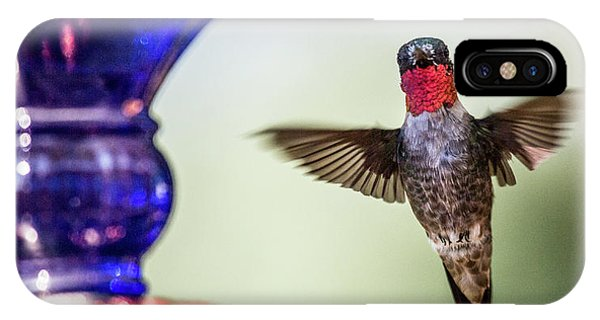 Beautiful Hummingbird iPhone Case - Top Of The Morning To You by Betsy Knapp