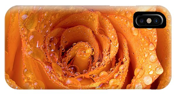 Top View Of An Orange Rose With Droplets IPhone Case