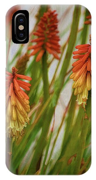 Torch Lily At The Beach IPhone Case