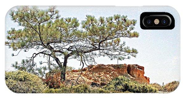 Torrey Pine 1 IPhone Case