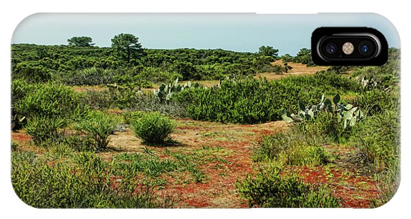Torrey Pines California - Colourful Verdant And Arid Juxtaposition IPhone Case
