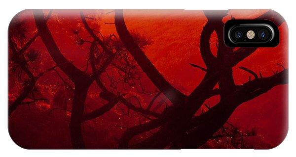 Torrey Pines Glow IPhone Case