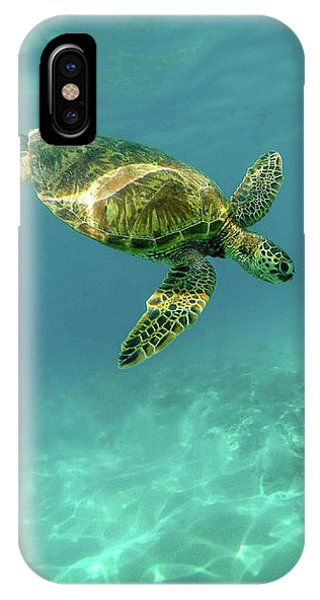 Turtle iPhone X Case - Tortoise by Happy Home Artistry