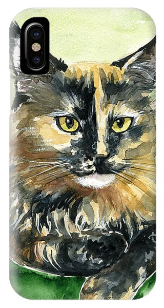 Tortoiseshell Maine Coon Portrait IPhone Case