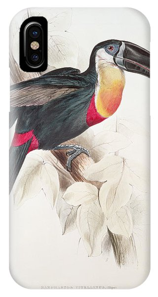 Toucan iPhone Case - Toucan by Edward Lear