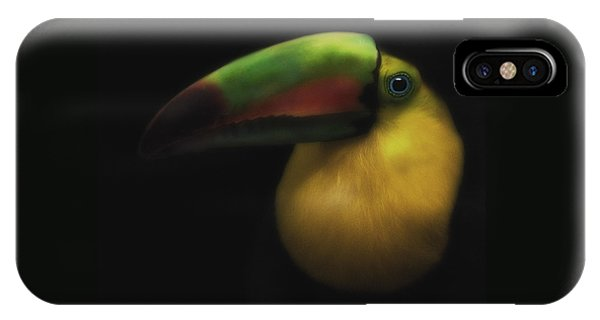 Toucan On Black IPhone Case