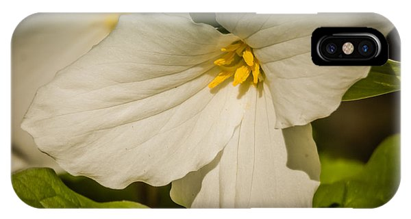Touched By A Trillium IPhone Case